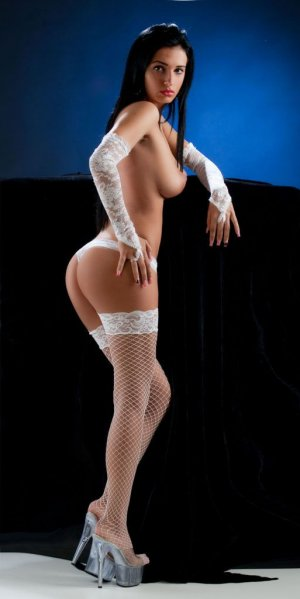 Noellie live escort in Romulus Michigan & nuru massage